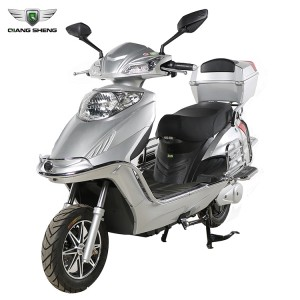 Big 2 Wheels Electric Scooter with 10 inch tire  E bike from Qiangsheng QS-MZ