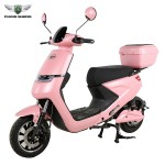Classic hot sell E-motorcycle 48V/60V 20AH E Scooter Factory Price E bike QS-S